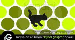 kedi-yakalama-oyunu