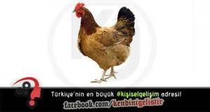 Motivasyon Hikayeleri - Tavuk Olduğunu Düşünen Kartal